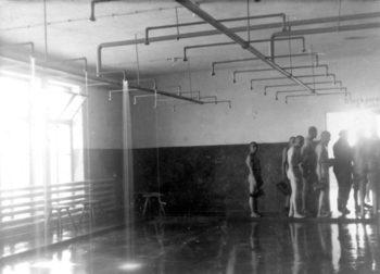 central-sauna